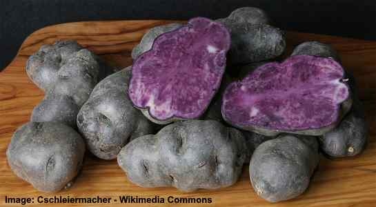 purple type of potato