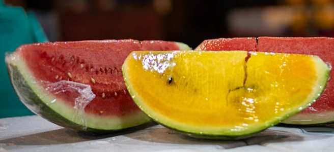 Watermelon is a type of melon with red or yellow flesh
