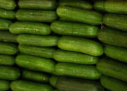 Lebanese cucumber