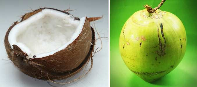 green and brown coconut