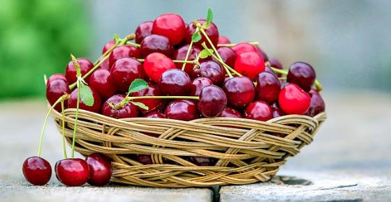 Types of Cherries: Varieties of Sweet, Sour and Tart Cherries