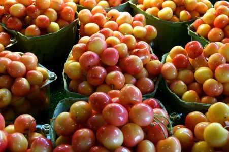 royal ann cherries
