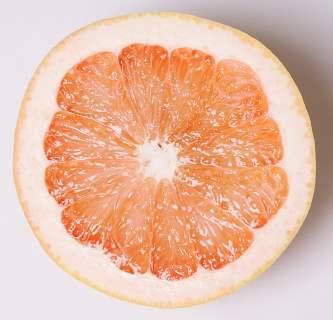 redblush grapefruit