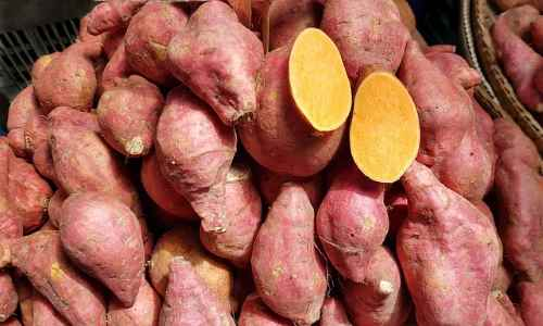 Type of sweet potato - Beauregard yam