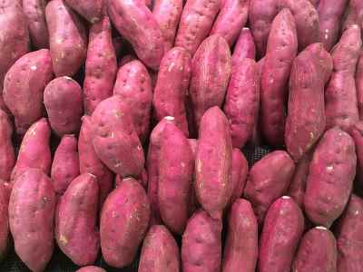 Types of sweet potato - Carolina ruby yams