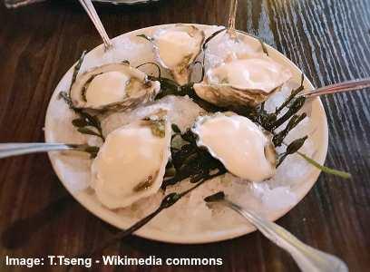 Shigoku oyster