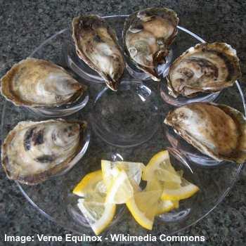 beausoleil oyster